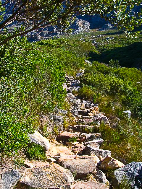 Table Mountain Hike Cape Town South Africa