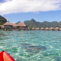 Blue Lagoon Paradise – Moorea, French Polynesia