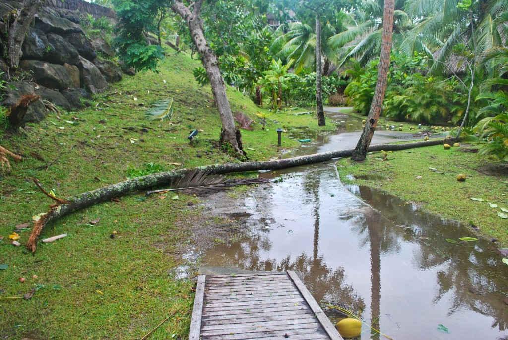Cyclone damage Bora Bora