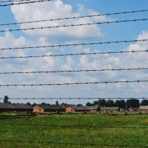 Awed by Auschwitz