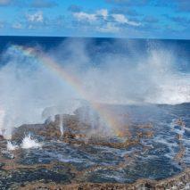 The Kingdom of Tonga: Perfect Polynesia