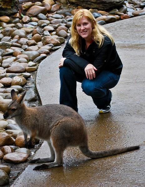 Wallaby Taronga Zoo Sydney
