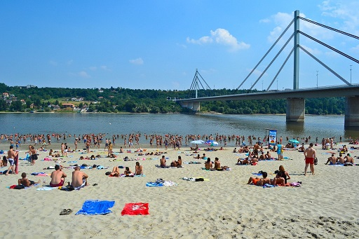 Strand Beach Liberty Bridge Novi Sad Serbia