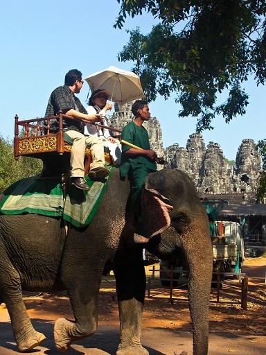 Elephant Angkor Cambodia