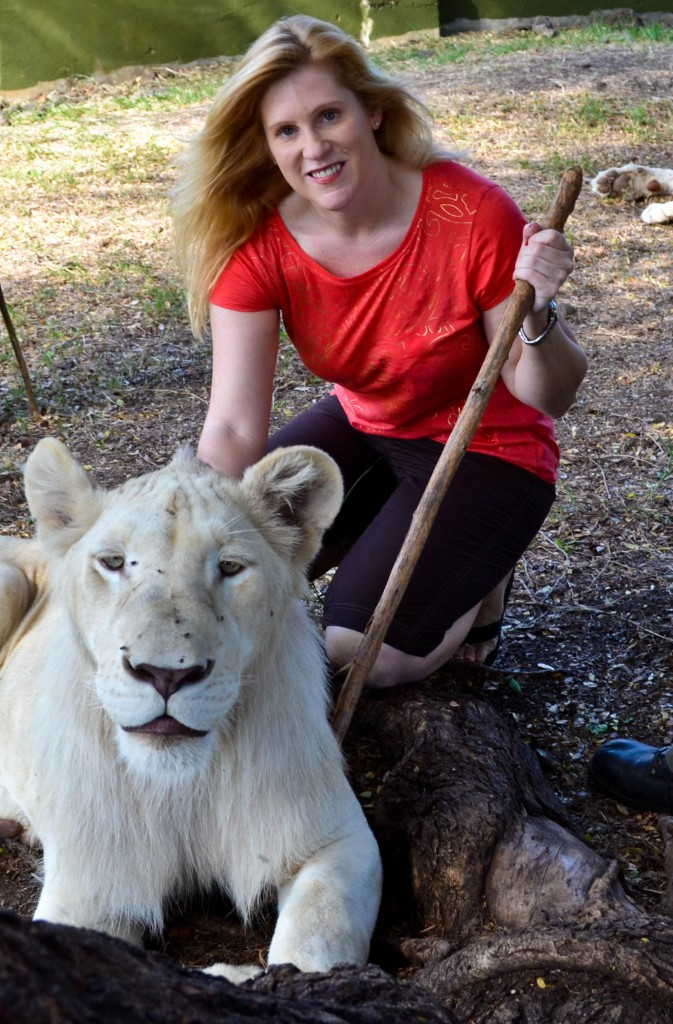 Lion encounter Casela Nature Park Mauritius