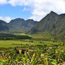 The Garden Island of Reunion