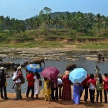 Sri Lanka: As Peace Prevails, Tourism Thrives
