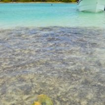 Photo of the Day – Piscina Natural, Dominican Republic