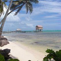 Belizean Beach Bum on Ambergris Caye