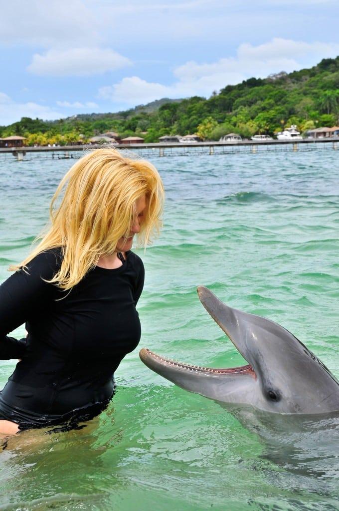 Dolphin encounter Anthony's Key Roatan Honduras