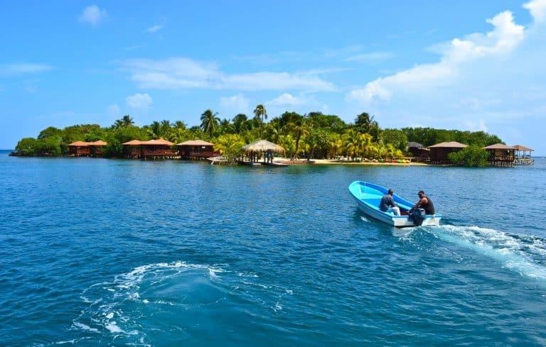 Roatan, Honduras: Dolphins, Diving & Underwater Dating Dilemmas