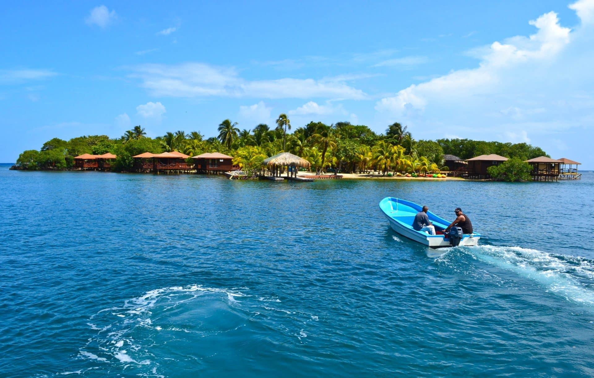 Roatan Honduras Dolphin Trainer for a Day
