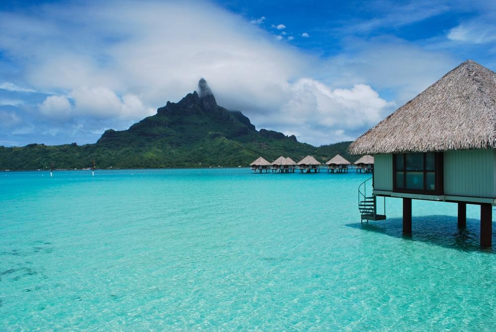 Surviving Bora Bora Sea Turtles Cyclones In Tahiti