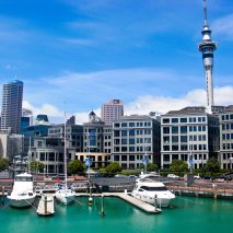 Always Perfect Auckland