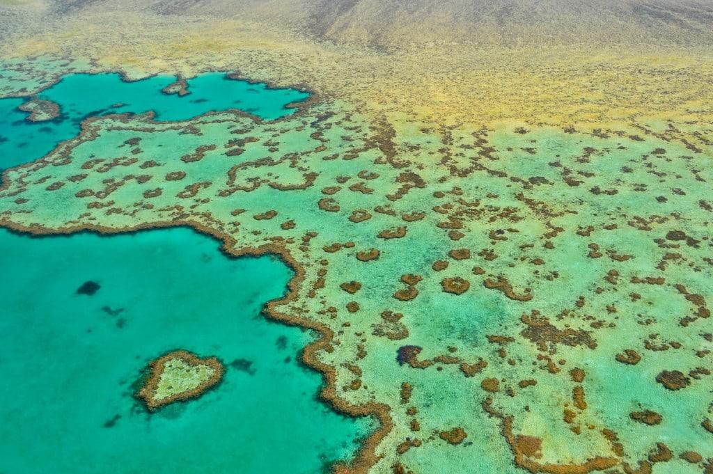 Heart Reef Great Barrier Reef Australia