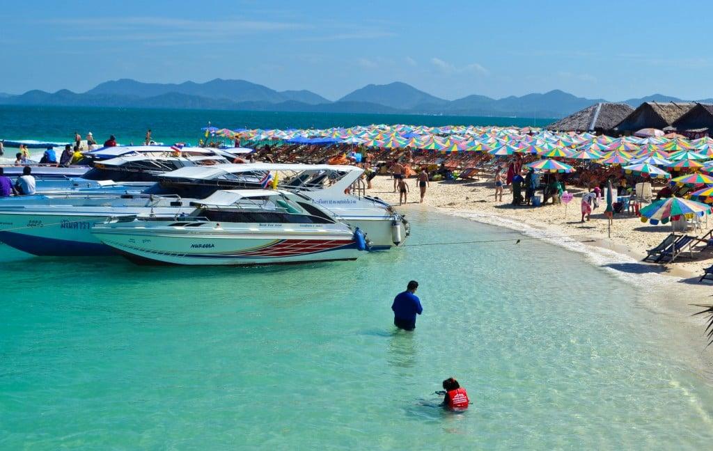 Khai Nok Phuket Thailand
