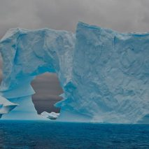 Expedition Antarctica: Why it's Worth Every Penny