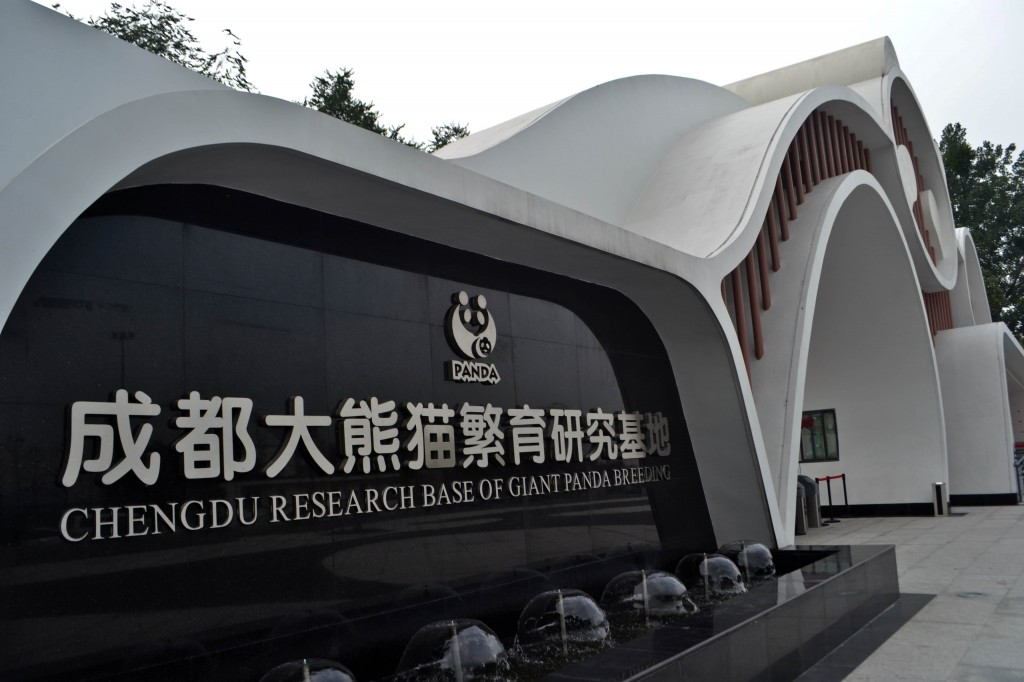 Chengdu Giant Panda Research Base