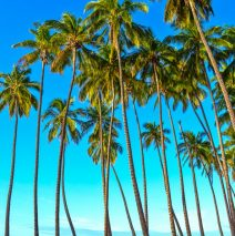 Photo of the Day – Molokai Hawaii