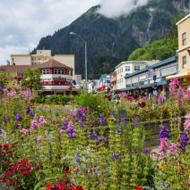 Photo of the Day – Juneau Alaska