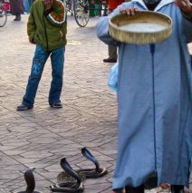 Photo of the Day – Jemaa el Fna Marrakech, Morocco