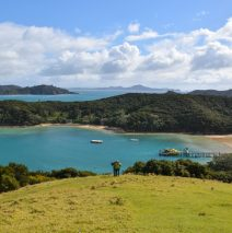 Pure New Zealand Beauty: The Bay of Islands