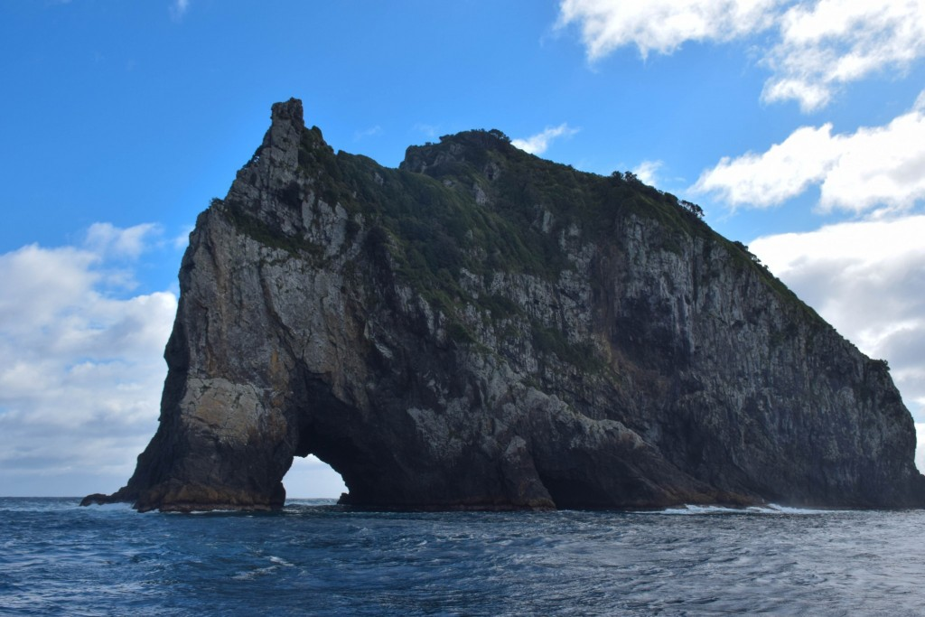 Hole in the Rock Bay of Islands New Zealand