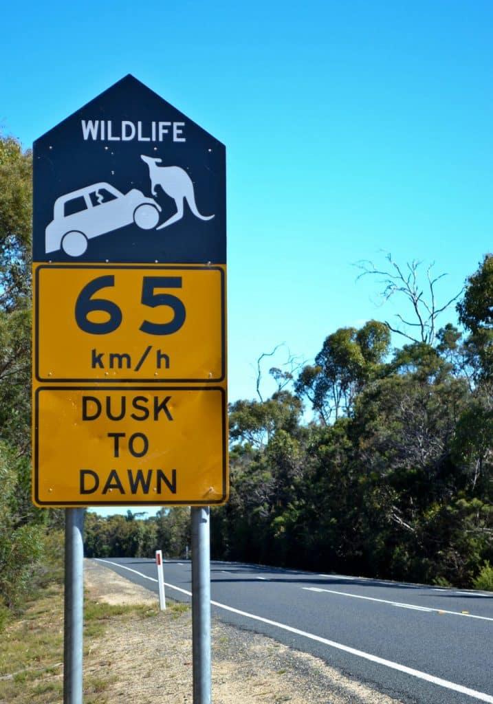 Tasmania Warning Sign