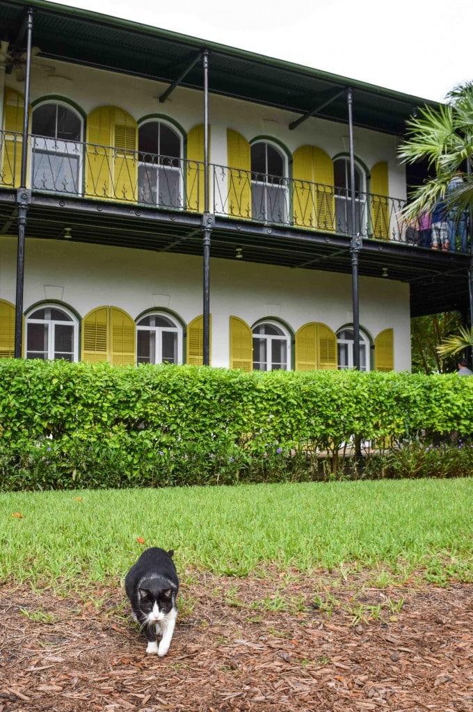 Hemingway House Key West Florida