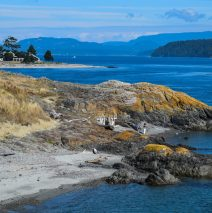 Summer in the San Juan Islands: A Travel Guide