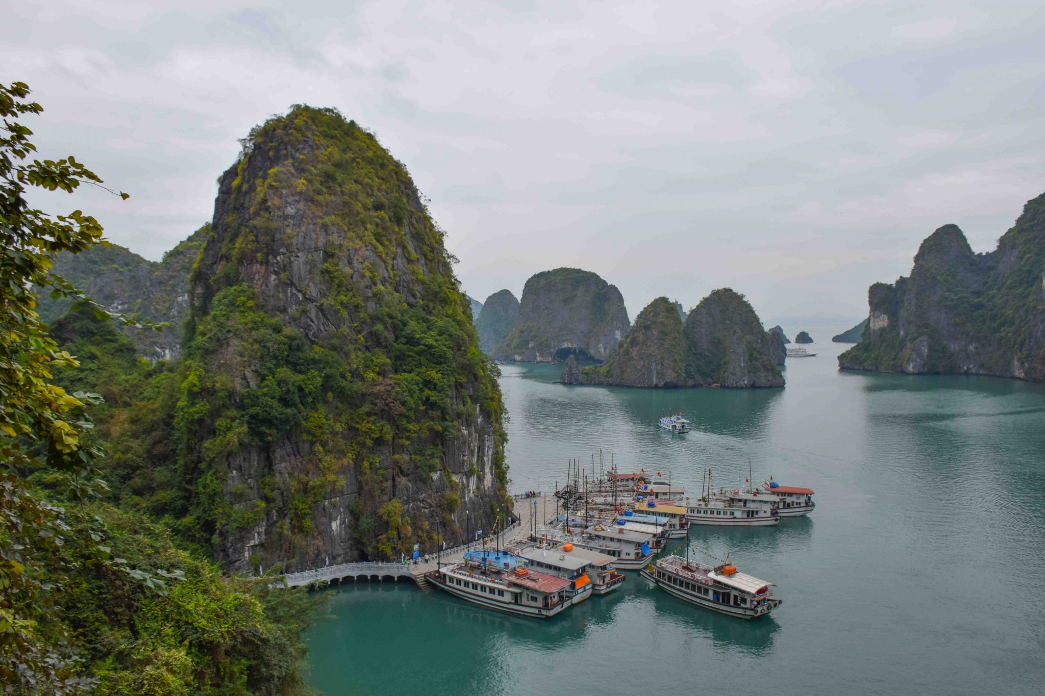 Asia Cruise Halong Bay Vietnam
