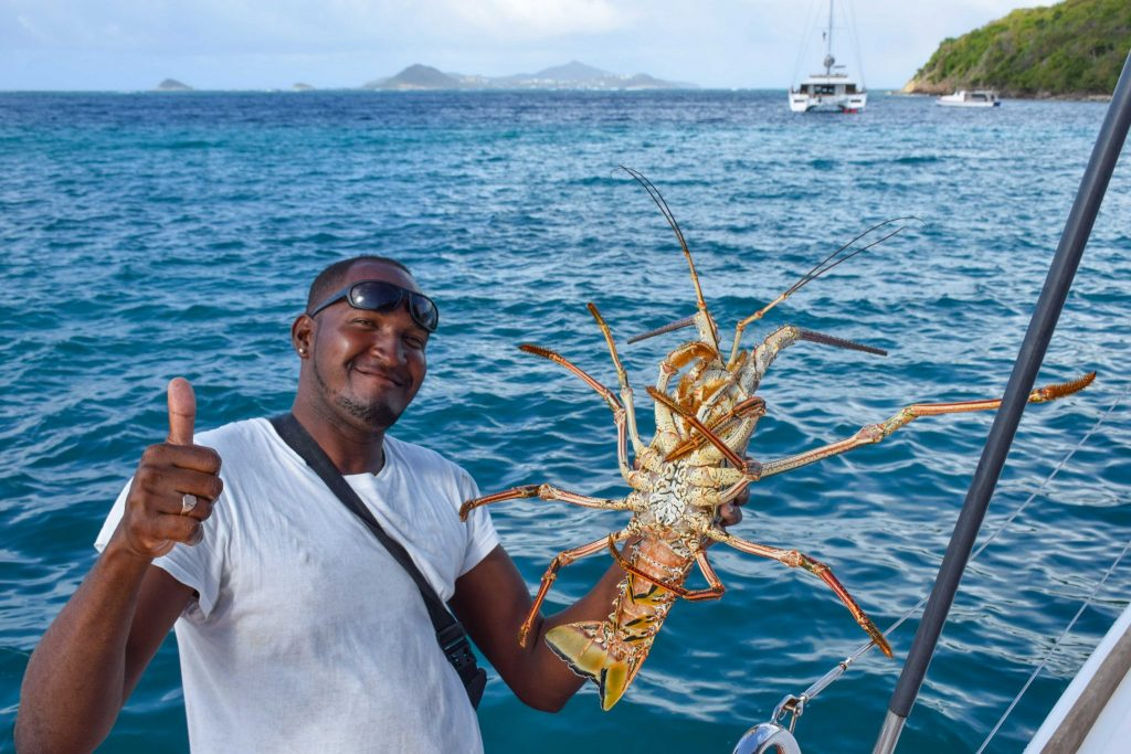 Caribbean Lobster Grenadines