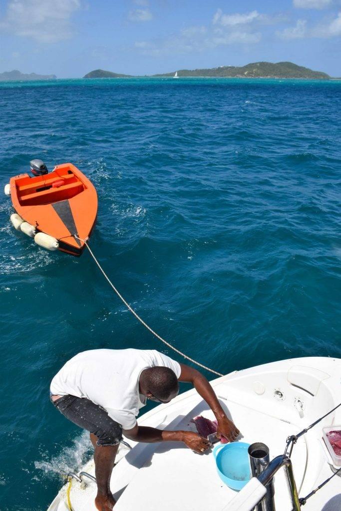 Greandines Sailing Caribbean
