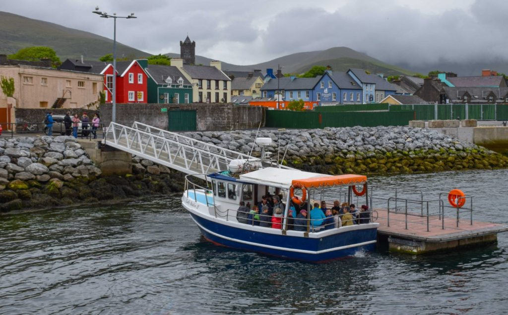 Dingle Dolphin Boat Trip Fungie