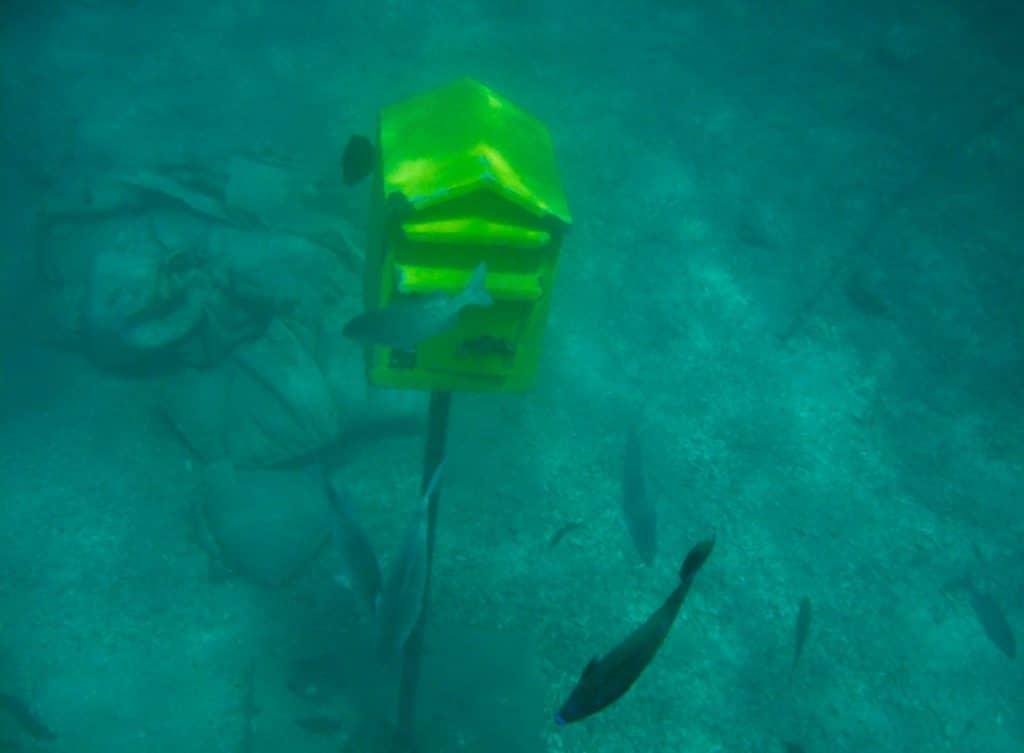 Vanuatu things to do underwater post office